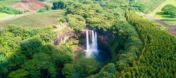 Kauai - Şelale